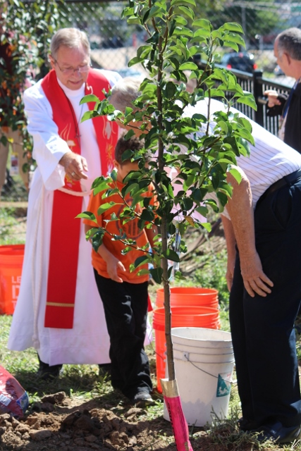 Planting of the Church Tree (427x640)